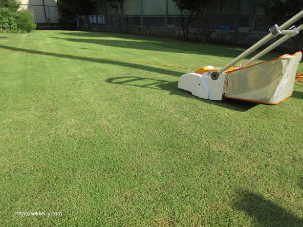 高麗芝の芝刈り