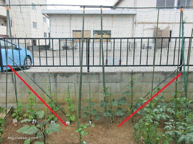つる植物 棚の補強