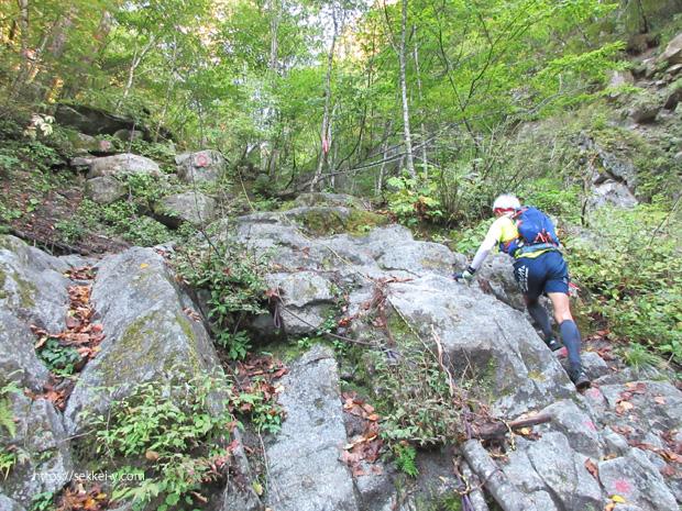 急登が続く地蔵岳登山道