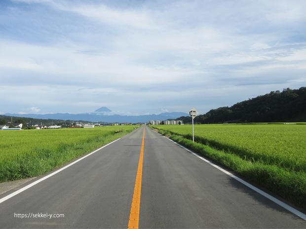 真っ直ぐに延びる道 稲穂と富士山