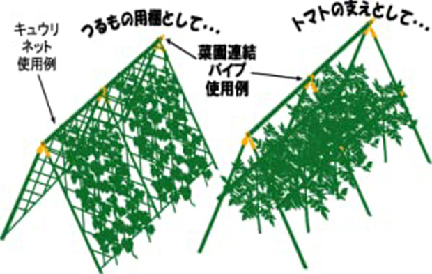 つる性植物の棚